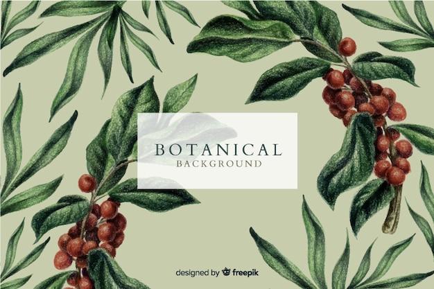 Berries and leaves vintage background