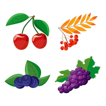 Berries set. cartoon set of berries