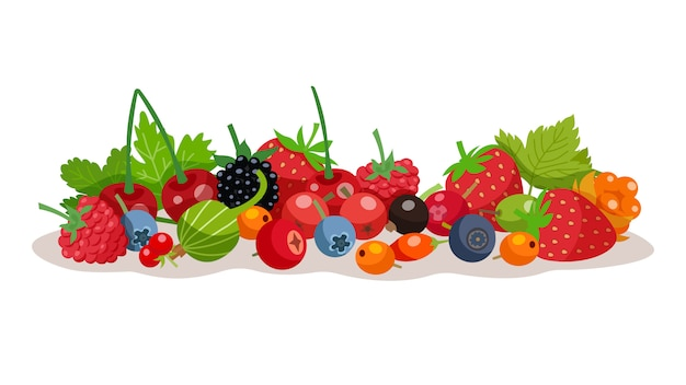 Berries vector illustration