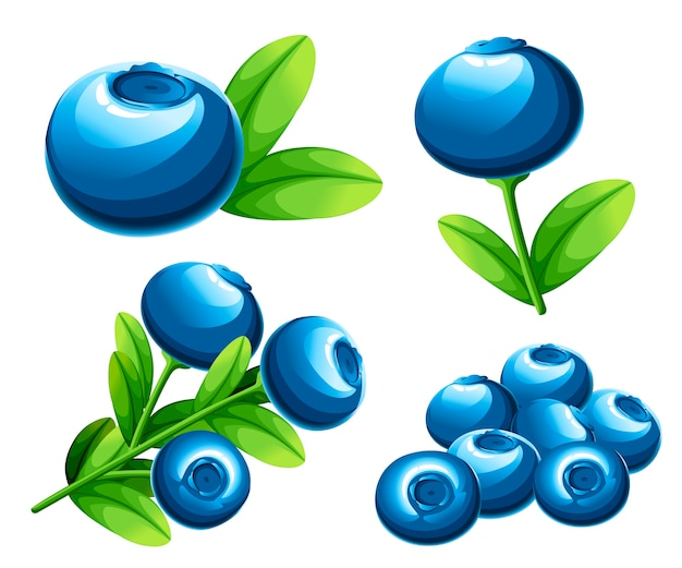 ベリーブルーベリーコレクション。緑の葉とブルーベリーのイラスト。装飾的なポスター、エンブレム天然物、ファーマーズマーケットのイラスト。ウェブサイトページとモバイルアプリ。