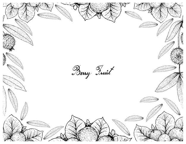 手描きスケッチのベリーフルーツイラストフレーム