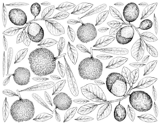 Berry fruit illustration wallpaper of hand drawn sketch