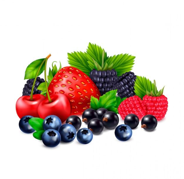 空白の背景の影と異なる果実の現実的な画像のクラスターとベリー果実の現実的な構成