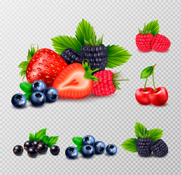 Berry fruit realistic set with clusters of ripe berries and green leaves images on transparent background