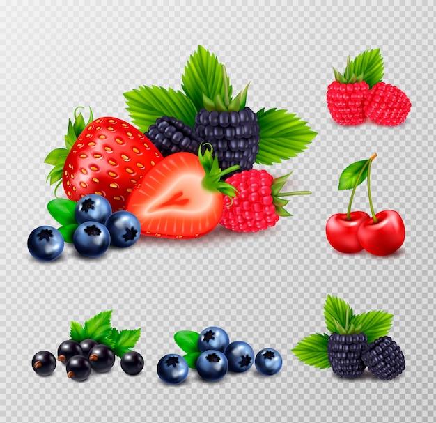 Insieme realistico di frutti di bosco con grappoli di bacche mature e immagini di foglie verdi su sfondo trasparente