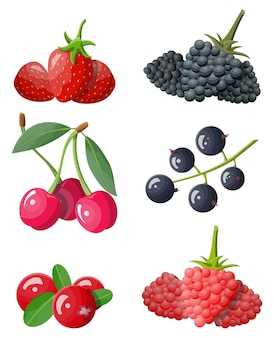 Berry icon set isolated on white