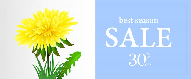 Best season sale, thirty percent off banner template with dandelion
