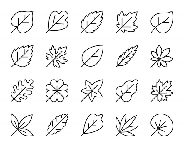 リーフラインアイコンセット、紅葉のシンプルなサイン、メープル、オーク、クローバー、白biの葉。