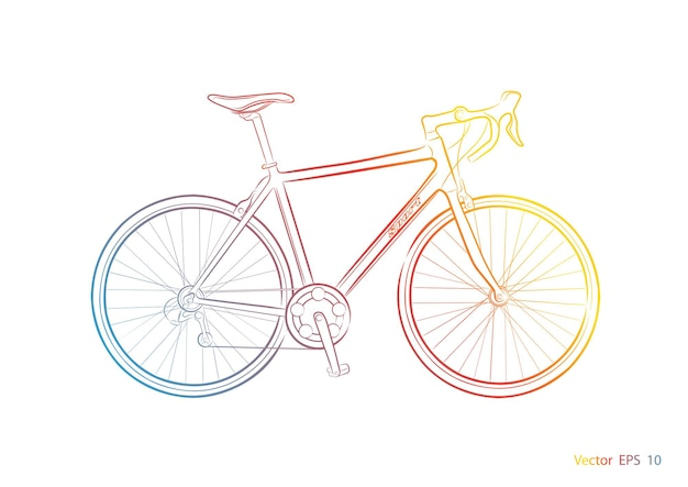 Bicycle on a white background .sports bike.
