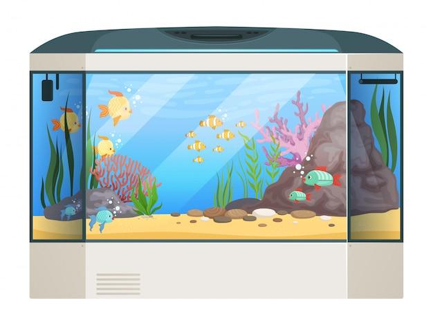 Big aquarium. fishes and water plants in glass aquarium tank underwater life cartoon illustration