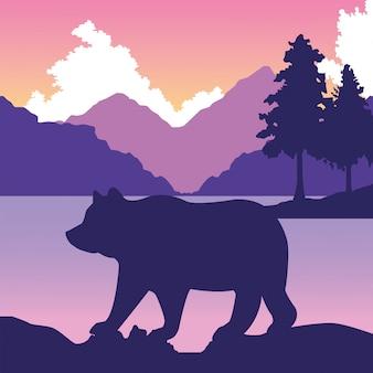 Big bear animal in the landscape scene illustration