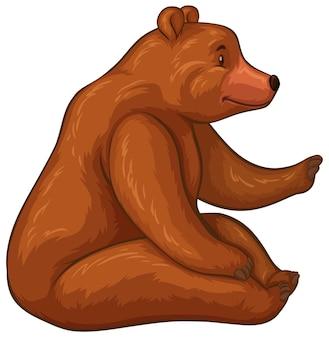 茶色の毛皮の大きなクマ