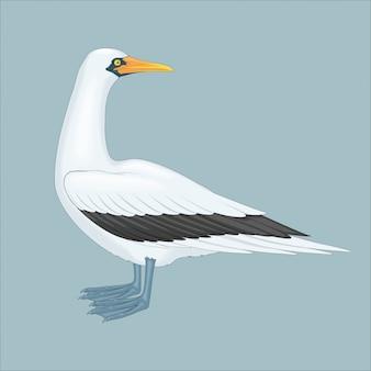 Большая птица чайка