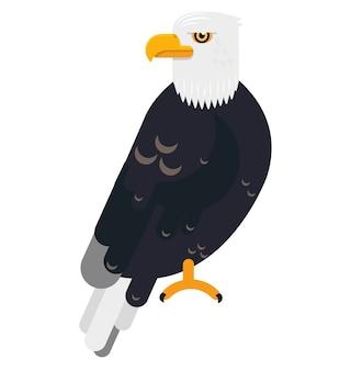 야생의 삶 벡터 평면 동물에 큰 검은 독수리