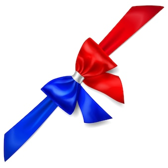 Big bow made of ribbon in france flag colors with shadow on white background