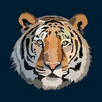 Big cat colorful vector illustration