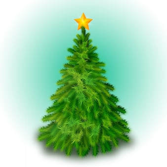Big christmas tree decorated with yellow star