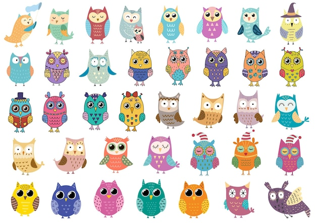 Big collection of cute owls illustration