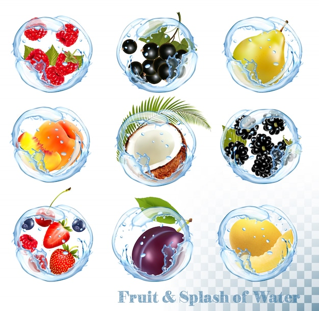 Big collection of fruit in a water splash. raspberry, black currant, blackberry, blueberry, plum, pear, peach, strawberry, coconut, honeydew.