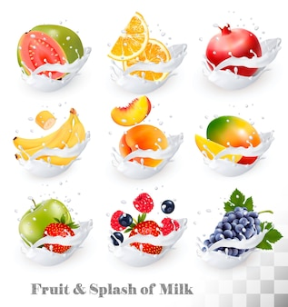 Большая коллекция иконок фруктов в молочном всплеске. гуава, банан, апельсин, яблоко, виноград, клубника, гранат, персик, манго. набор