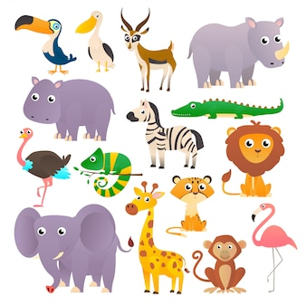 Big collection wild animals