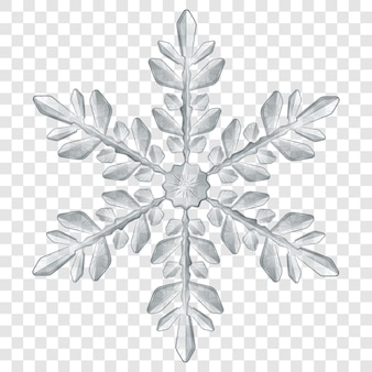Big complex translucent christmas snowflake in gray colors for use on light background. transparency only in vector format