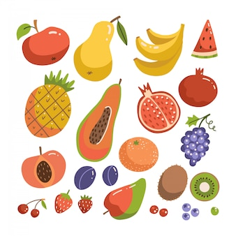 Big fruit set. modern flat vactor design. isolated objects. fruit icons. hand drawn illustration collection.