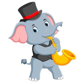 The big grey elephant uses a black hat