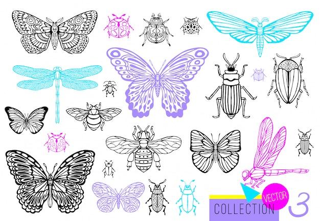 Большой набор рисованной линии насекомых жуков, жуков, пчел, бабочек; мотылек, шмель, оса, стрекоза, кузнечик. силуэт винтажный эскиз стиля выгравированы иллюстрации.