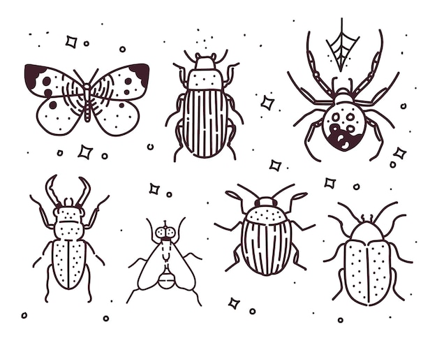 곤충의 큰 손으로 그린 라인 세트입니다. 곤충 그림