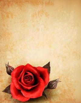 잎이 오래 된 종이에 큰 빨간 장미
