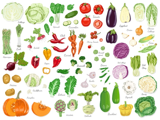 Big set of colored vegetables
