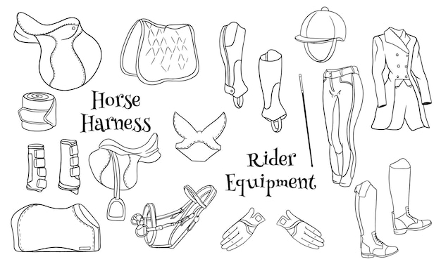 Big set of equipment for the rider and ammunition for the horse illustration in line style