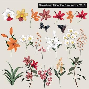 大きなセットの庭の花の要素-ワイルドフラワー、牧草地、葉のコレクション