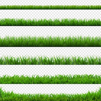 Big set green grass borders transparent background, vector illustration