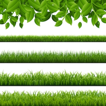 Big set green grass and leaves borders white background