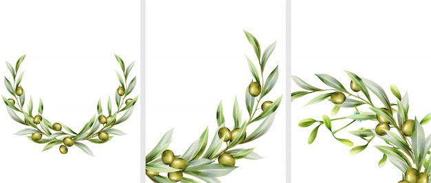 Big set of green olive wreath