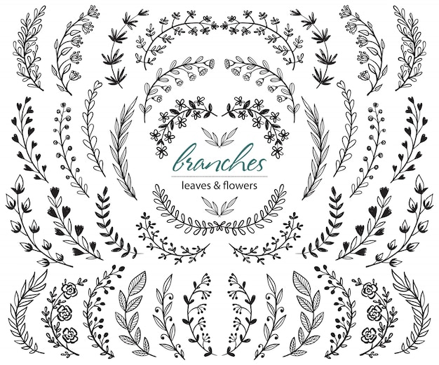 Big set of hand drawn   plants and branches with leaves, flowers, berries. floral sketch collection.