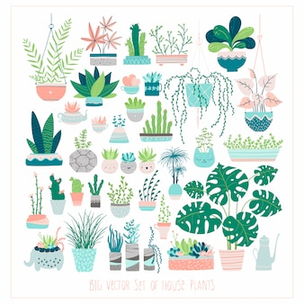 Big set of home plants in pots. illustrations in free hand-drawn style. Premium Vector