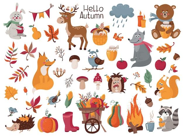 秋のハーブ、葉、森林動物の大きなセット