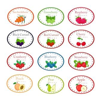 Большой набор различных этикеток для варенья и консервов с садовыми фруктами и ягодами, изолированными на белом.
