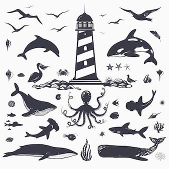 Большой набор морских существ и морских животных, изолированных на белых дельфинов, китов, акул, рыб, птиц