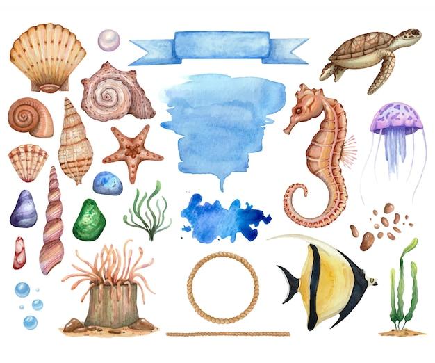 分離された海主題の水彩イラストの大きなセット。