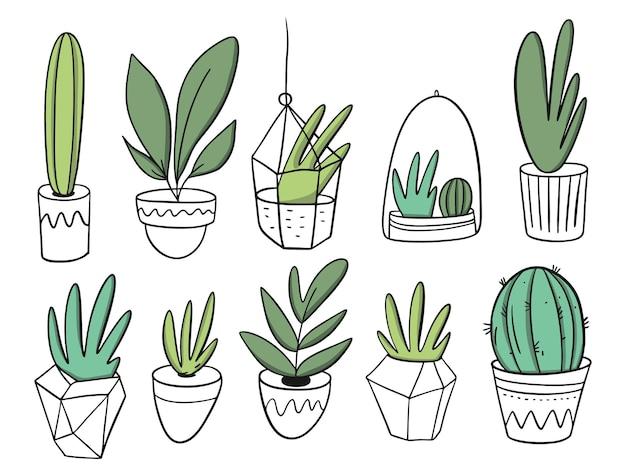 흰색 냄비에 큰 세트 식물. 만화 스타일. 외딴.