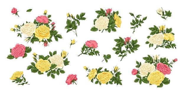 Big set of roses