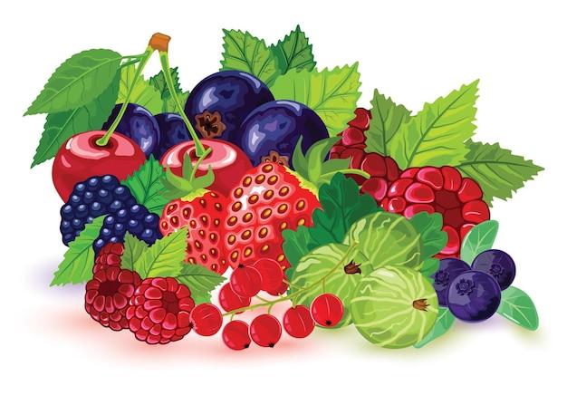 Big set of summer ripe berries picking