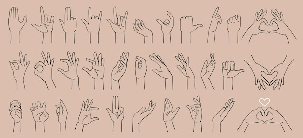 Big set various hand gestures hand signs hand drawn with a line vector illustration isolated