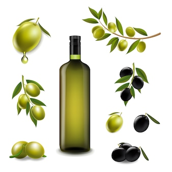 Big set with branch olives and with virgin olive oilin glass bottle