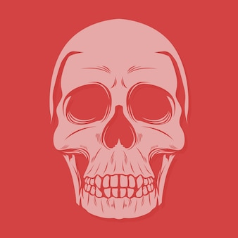 Big teeth skull