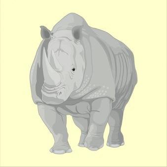 Big wild rhino